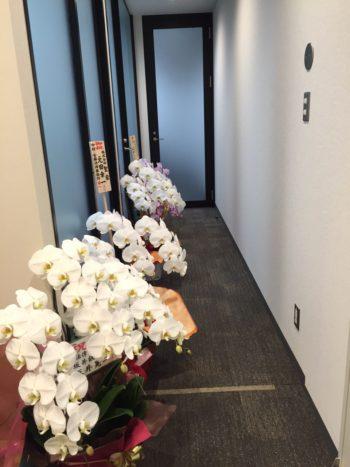 事務所 廊下